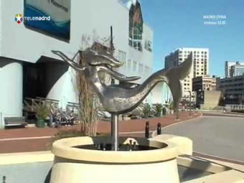 Madrileños por el Mundo: Virginia (Estados Unidos)