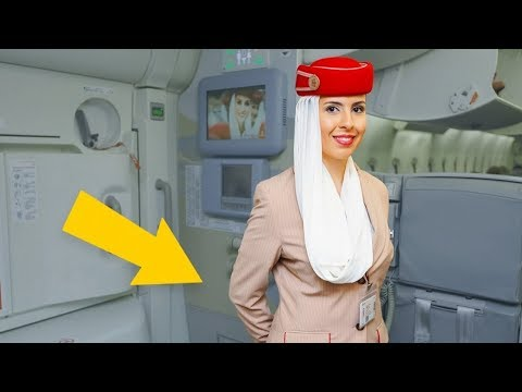 This Is Why Flight Attendants Keep Their Arms Behind Their Back…