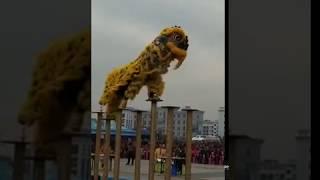 大年初六广西刘三姐故乡宜州市狮王大赛