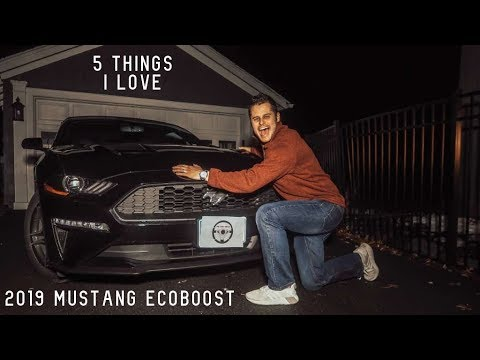 5 Things I LOVE About the 2019 Ford Mustang EcoBoost