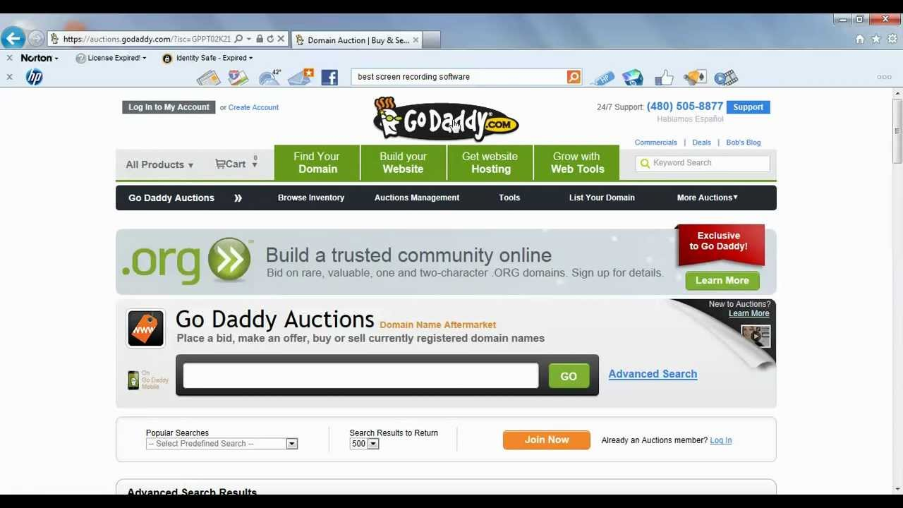 what happens when you buy a domain name from godaddy