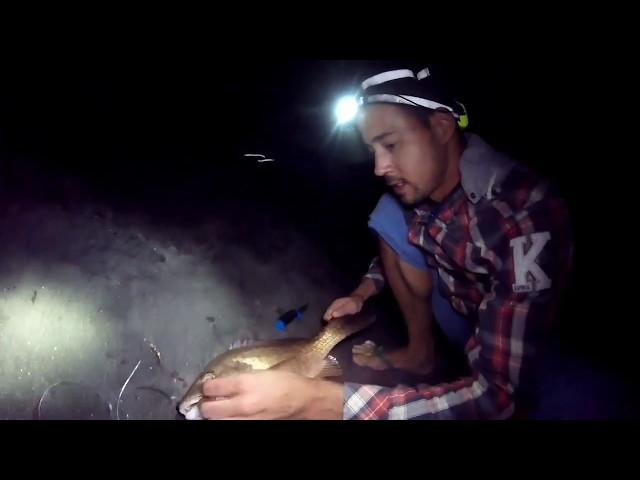 Bivouac de pêche Martinique