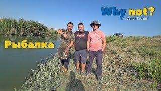 Рыбалка на канале за 160 км от Ташкента, снова в деле и на природе
