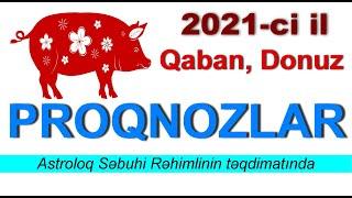 Qaban Donuz Ilində Dogulanlarin 2021 Proqnozu Youtube