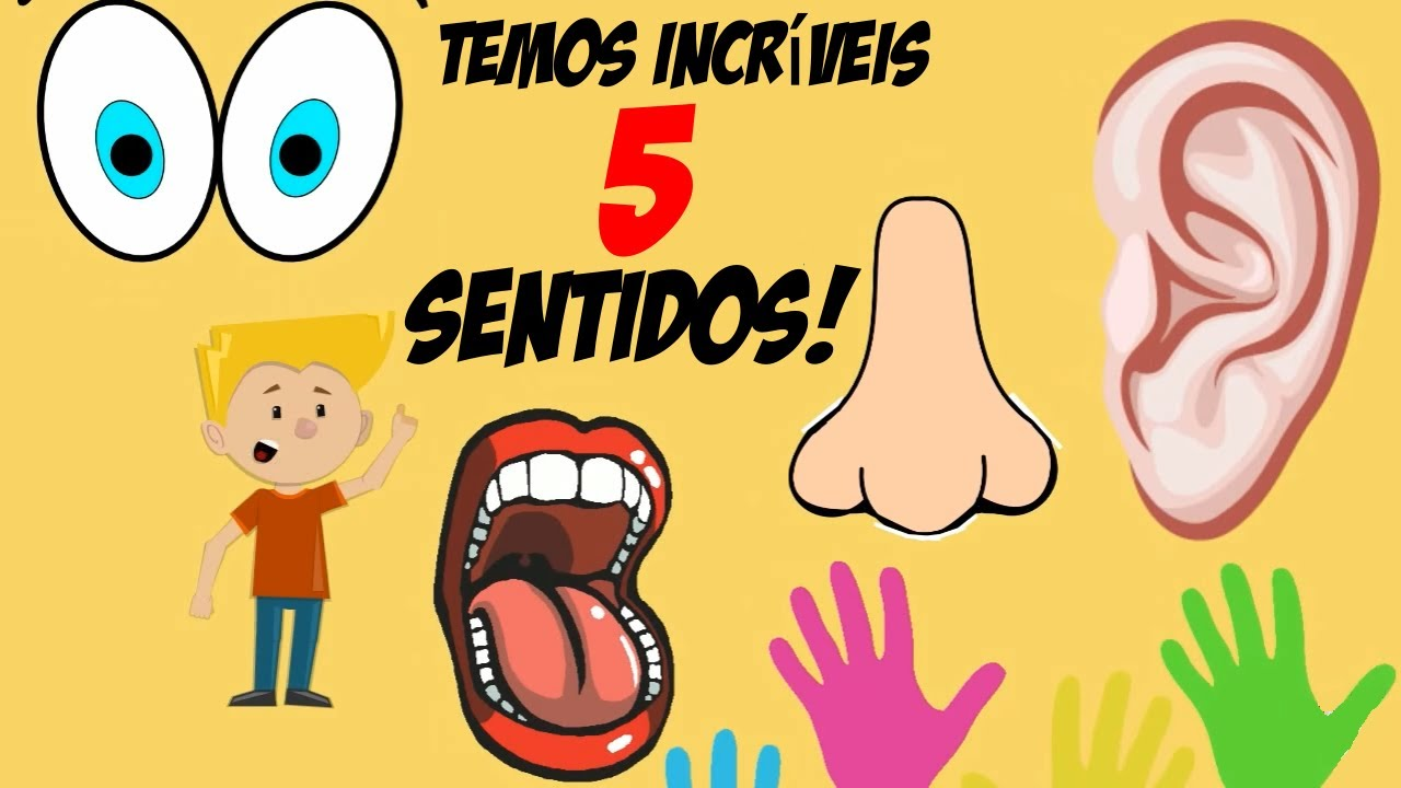 Excepcional 5 Sentidos Educação Infantil - Visão, Olfato, Audição, Tato  CH45