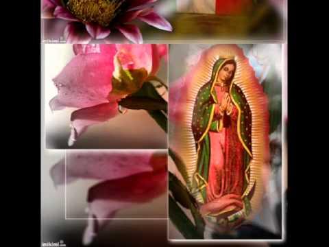 Virgen de Guadalupe (Virgen Morena) Marco Antonio Solis.