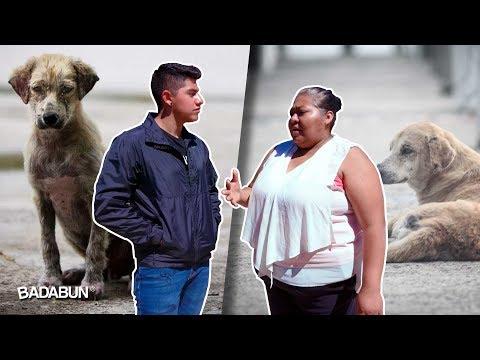Ella es Keila. Tiene 300 perros y su historia te hará llorar