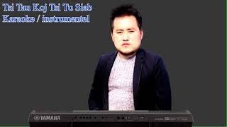 Pob Tsuas Xyooj Tsi Tau Koj Tsi Tu Siab karaoke instrumentel