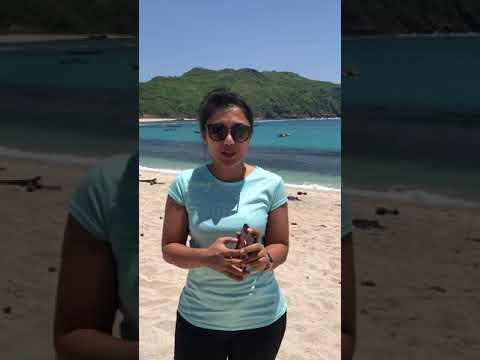 Wow brigita manohara lagi di pantai