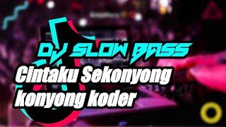 Download DJ CINTAKU SEKONYONG KONYONG KODER DIDI KEMPOT LAWAS