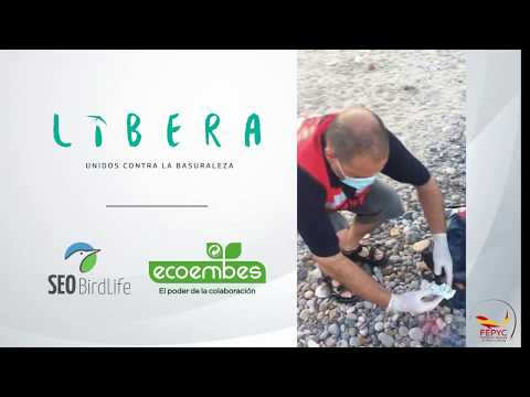 Proyecto Libera 03