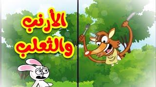 الأرنب والثعلب - قناة بيبي الفضائية | Toyor Baby Channel
