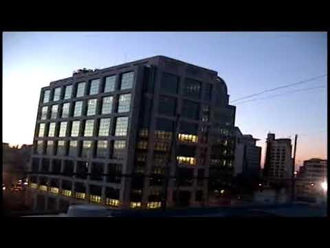 Aguila en pleno centro de Montevideo