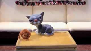Вы когда-нибудь видели как чихает котенок?