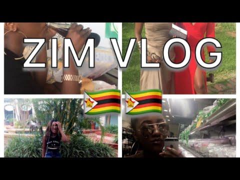 Vlog#1 Zimbabwe 2016