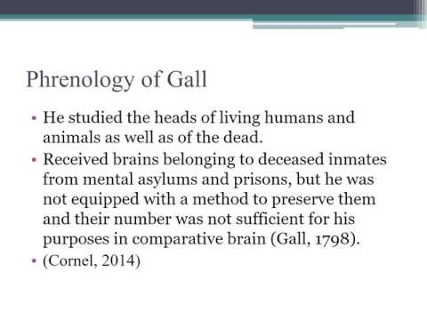 Phrenology of Gall and Spurzheim Presentation