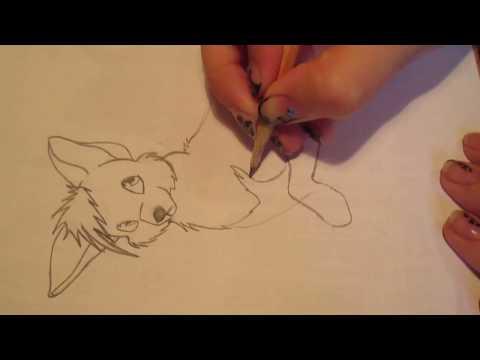 Как нарисовать аниме волка