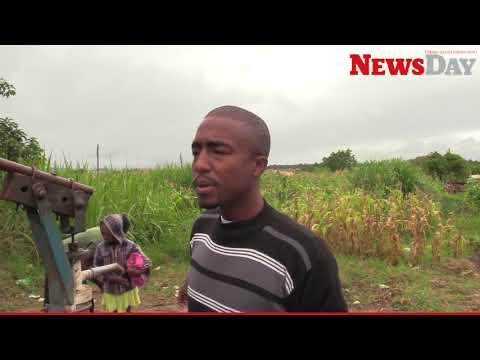 Health risk as water crisis hits Kuwadzana