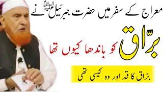 Meraj Me Burraq Ko Hazrat jibraeel A.S. Ne Bandha Kyo Tha   Sheikh Makki AL Hijazi   Islamic Views  