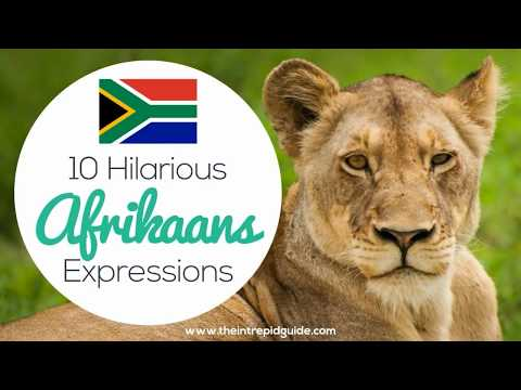 10 Funny Afrikaans Idioms 🇿🇦