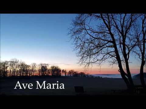 Ave Maria (heut sind so viele ganz allein)