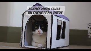 Casa para gatos | DIY | VIX