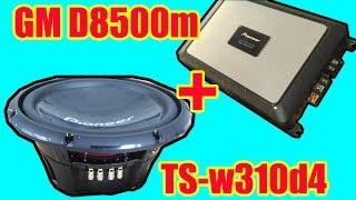 Pioneer ts-W310d4 + GM-d8500m
