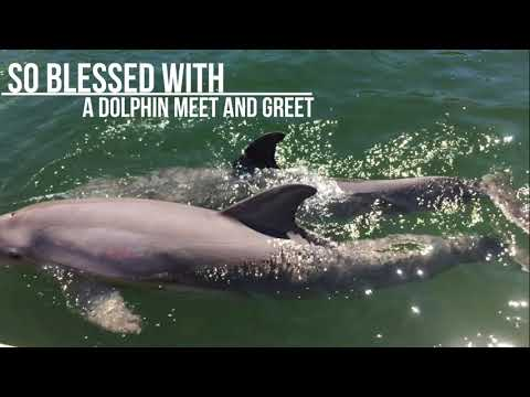 Trip to Island Dolphin Care in Key Largo