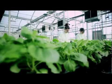 Agricultural Biotechnology: Accelerating Economic Opportunities in North Carolina UPDATE