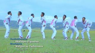 Daanyee Asaffaa (Wal Jabeeffachuun Yoona) New Ethiopian Oromo Music 2019(Official Video)