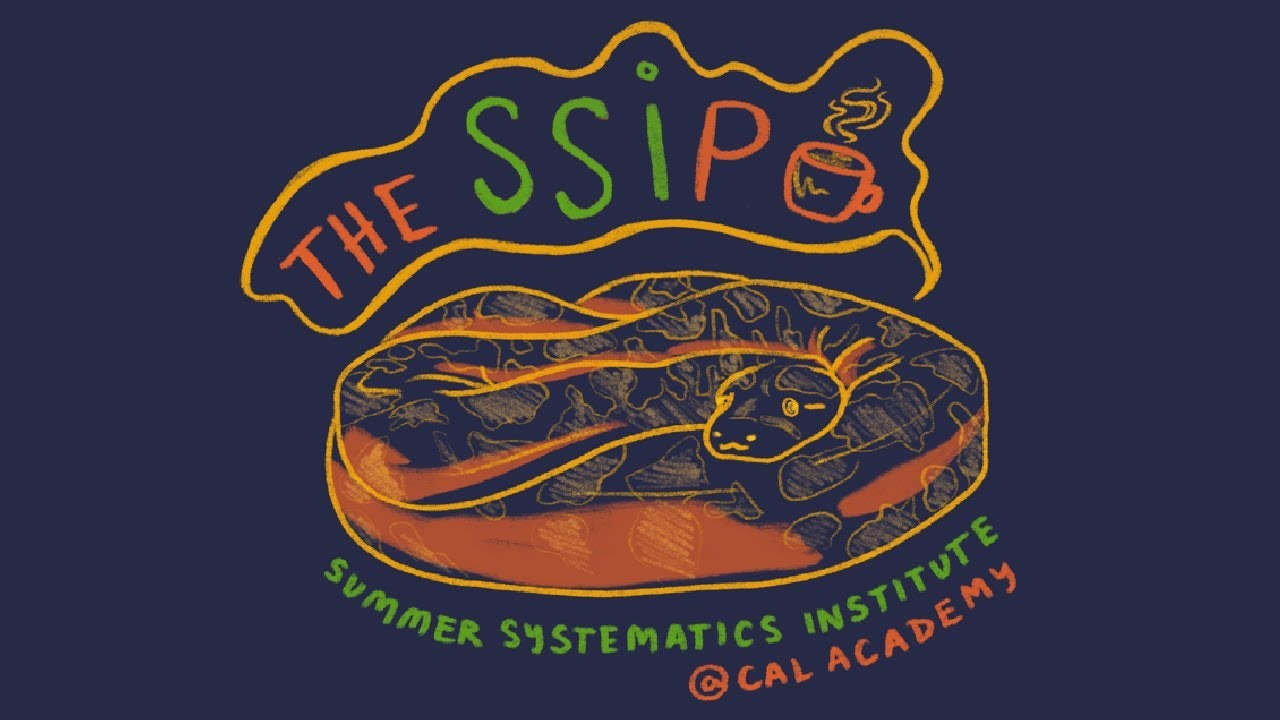 The SSIp: Introducing... Arya (Ep. 11)