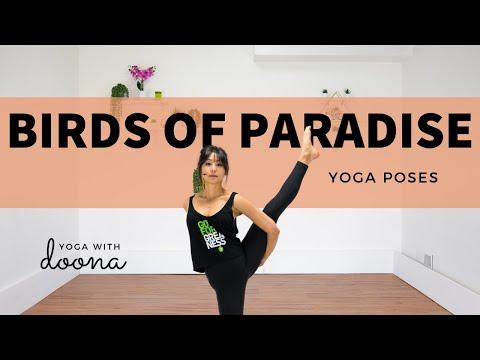 How to Birds of Paradise | Svarga Dvijasana | Perfecting Your Alignment | Yoga with Doona