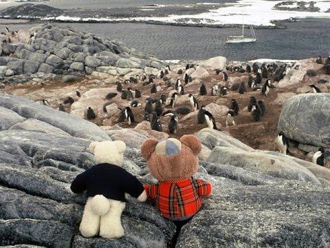 1993 Teddies to Antarctica, McIntyre Adventure