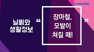 [날씨] 8월 3일_장…
