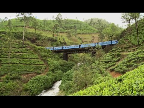 Un billet de train pour … le Sri Lanka