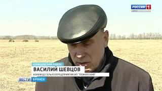 Необычное агропредприятие в Клинцовском районе