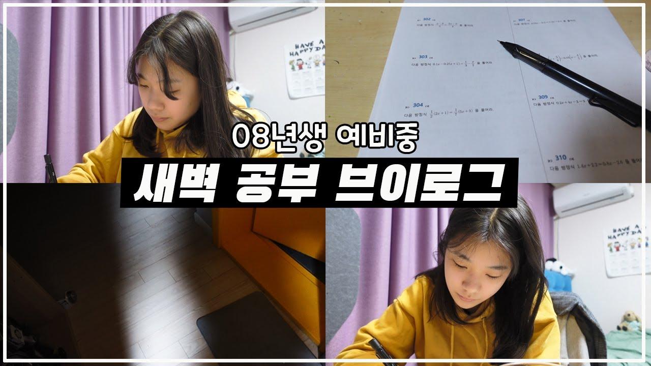 예비중 공부 브이로그! 가족 모두 잠든 밤 혼자 공부하는 스터디 브이로그_하이유리