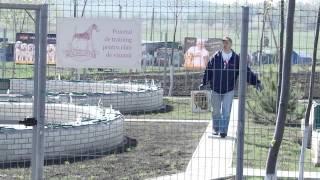 Чемпионат норных собак по лисице в искусственных норах