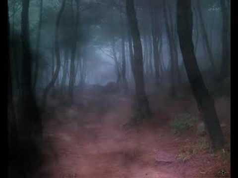 Fields of the Nephilim--Requiem XIII 33