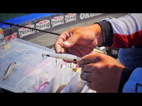 Spring Time Jerk Bait Fishing Tips - The Things You Need To Know To Catch More Bass