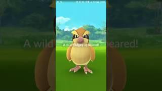 Скачать 6 часть Pokemon GO Ломаем гимны
