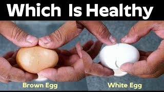Which One Is Healthy ? - BrownEGG Or WhiteEgg | ABC Health