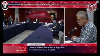 SME Foro la reforma eléctrica en el Senado de la República, Martín Esparza Flores