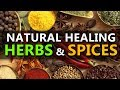 Natural Healing Herbs and Spices - Healthy Herbs and Spices For Your Body - Best Spices & Herbs