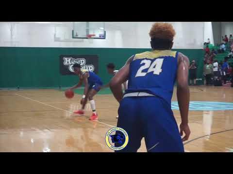 6'4 G 2020 Quadry Adams 2019 NJ Panthers Highlights