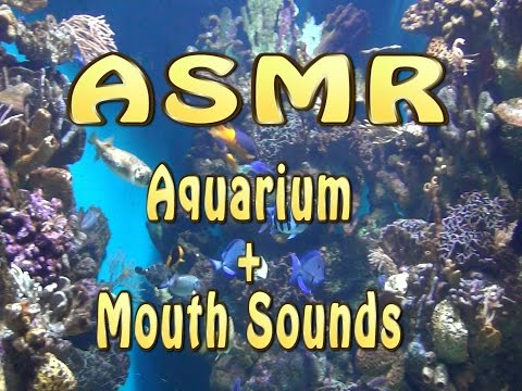 ASMR. Aquarium + Mouth Sounds - Acuario Barcelona. Relajación.