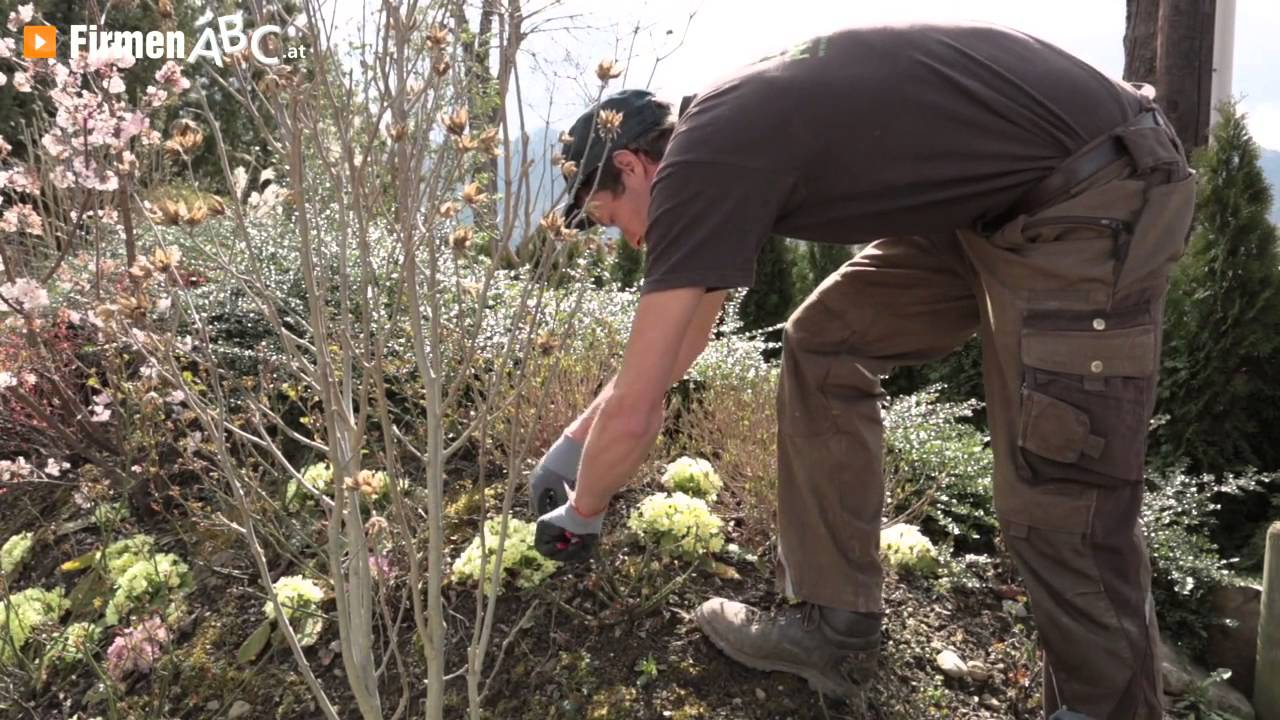 Gartengestaltung Garten Pfleger In Gratwein-straßenengel ... Garten Anleitung Gartenpflege
