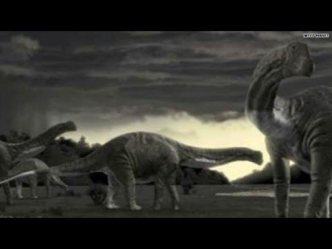 Real-life Godzilla: Titanosaur = largest dino ever