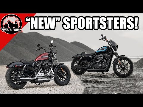 """The """"New"""" Harley Sportster 48 Special & Iron 1200"""