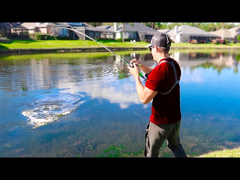 Pond Fishing For GIANT Bass W/ BIG Jigs & Swim Jigs